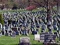 Mt. Olivet Cemetery.jpg
