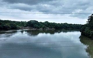Mula River (India)