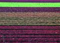 NRCSAZ02048 - Arizona (379)(NRCS Photo Gallery).jpg