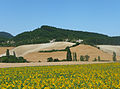 Navarre Paysage près d'Alzuza 2.jpg