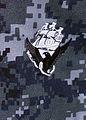 Navy WCU Insignia.jpg