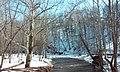 Neshanic River, East Amwell, NJ - panoramio (4).jpg