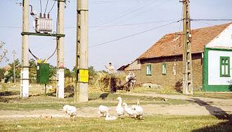 Dudeștii Noi - Image: Neubeschenowa Impression 2003
