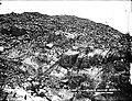 New Zealand, Bounty Islands, 1888 (3).jpg