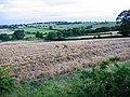 Newbiggin Farm - geograph.org.uk - 502041.jpg