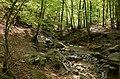Ninglinspo - panoramio (7).jpg