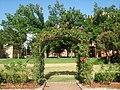 Norman, OK USA - University of Oklahoma - panoramio (7).jpg