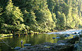 North Umpqua fly fishing.jpg