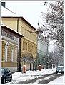 Nyíregyháza, 2008 első hó - panoramio - Szemes Elek (35).jpg