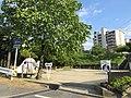 Okazaki-Dodo-Park-1.jpg
