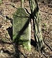 Old evangelical cemetery in Siedleczek (2).jpg