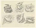 Ontwerpen voor een watermerk van een bankbiljet- zes ontwerpen met vogels.jpeg