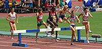 Osaka07 D1M W3000M Steeplechase Heat.jpg