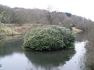Otterhead Lakes - Image: Otterford Lakes Nature Reserve