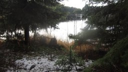 File:Overlooking Browne Lake on a Calm Rainy Morning in Late Autumn.webm