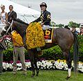 Oxbow (horse).jpg