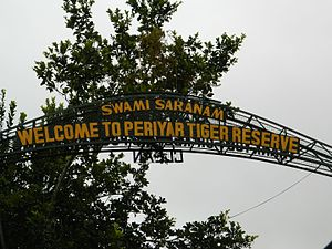 Periyar National Park - Entrance to the tiger reserve