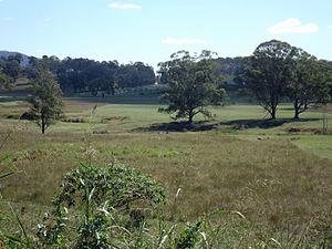 Bromelton, Queensland - Paddocks, 2016