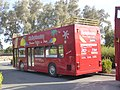 Pafos Open-Top Sightseeing Bus (23693134728).jpg