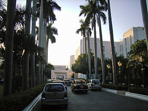 The Imperial, New Delhi - Palm trees lining the entrance of Imperial Hotel