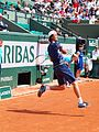 Paris-FR-75-open de tennis-25-5-16-Roland Garros-Taro Daniel-04.jpg