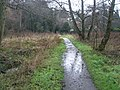 Path approaching the River Wey within Shalford Park - geograph.org.uk - 1082811.jpg