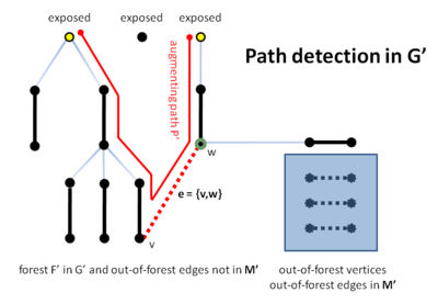 Detection of augmenting path P′ in G′ on line B17