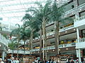 Pentagon City Mall palm trees.jpg