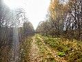Permskiy r-n, Permskiy kray, Russia - panoramio (787).jpg