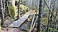 Petit pont dans les sentiers du rapido - panoramio.jpg