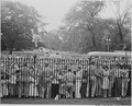 Photograph of a huge crowd outside the White House gates celebrating the Japanese surrender. - NARA - 199178.tif