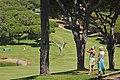 Photographing Golf (907830059).jpg