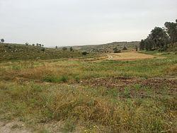 PikiWiki Israel 43769 Agriculture in Israel.jpg