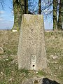 Pillar with a Bench mark - geograph.org.uk - 1749988.jpg