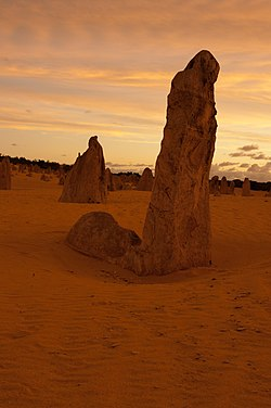 Pinnacles gnangarra-60.jpg