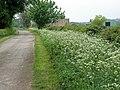 Poden Lane and farm - geograph.org.uk - 423110.jpg