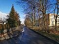 Polenzweg Senftenberg 2020-01-11 2.jpg