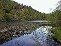 Polney Loch - geograph.org.uk - 746080.jpg