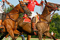 Polo At the Kentucky HOrse Park (5996464824).jpg