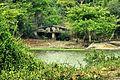 Pond in Deer Park.jpg