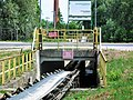 Ponds in Lewin Brzeski south (10).jpg