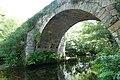 Ponte Romanica do rio Poio (13).jpg