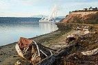 Port Townsend – living under driftwood.jpg