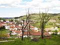 Postojna - broken trees.jpg