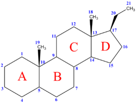 los esteroides en el cuerpo
