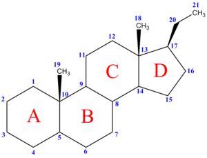 Numbering of the carbon atoms