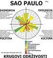 Profil Sao Paulo.jpg