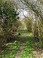 Public footpath - geograph.org.uk - 1221055.jpg