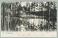 Punkaharju, Likolahti, Kruununaita, 1899 PK0173.jpg