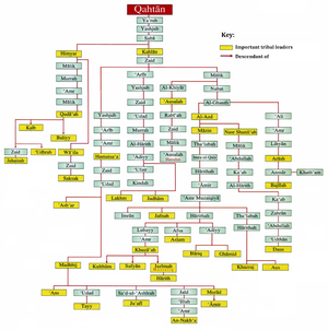 Qahtanite - A family tree of the Qahtanites